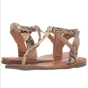 NEW Steve Madden Snakeskin Sandals